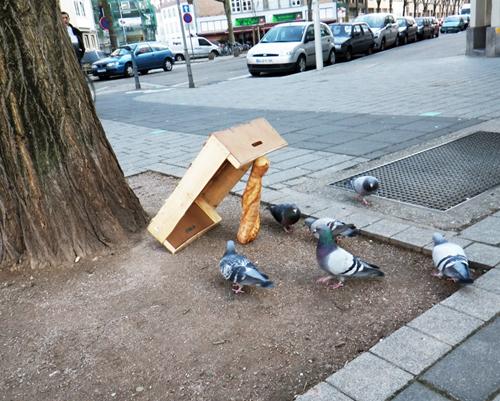 ttrape pigeon baguette de pain + cagette (Strasbourg - mars 2012)