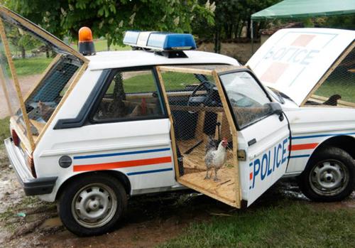 La voiture de police poulailler - Ferme d'élevage de Vernand, 2013