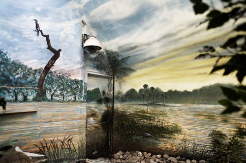 Captive Landscapes