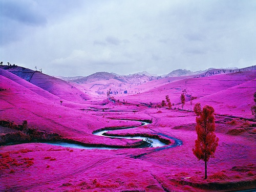 Richard Mosse · »Platon, North Kivu, Eastern Congo«, 2012 Courtesy of the artist and Jack Shainman Gallery, New York