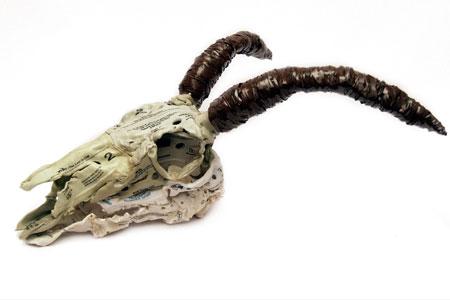 Brian Dettmer . Goat Skull